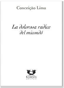 COVER_CONCEICAO